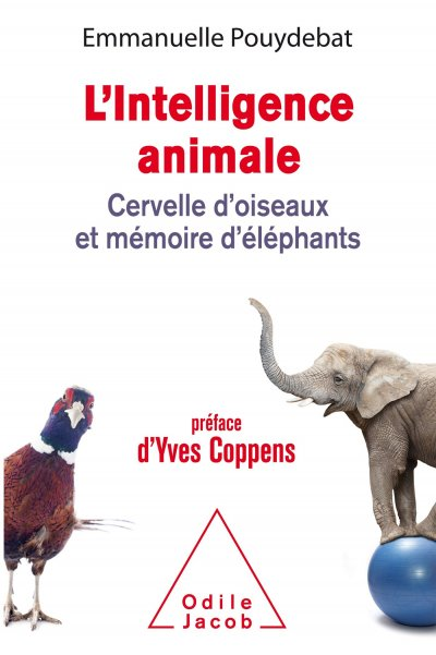 L'intelligence animale de Emmanuelle Pouydebat