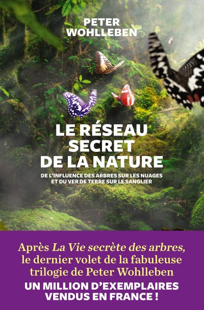 Le réseau secret de la nature de Peter Wohlleben
